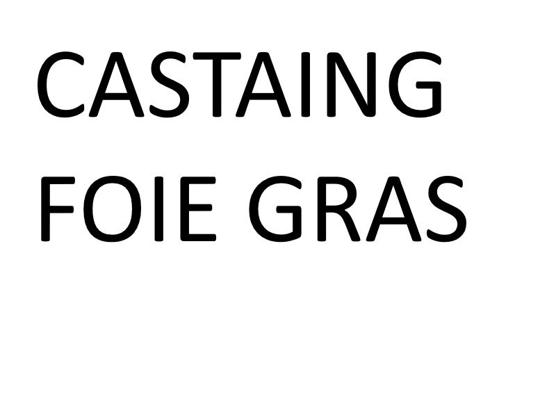 Castaing, Foie Gras d'Exception